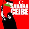 Solidariedade internacionalista co pobo saharauí